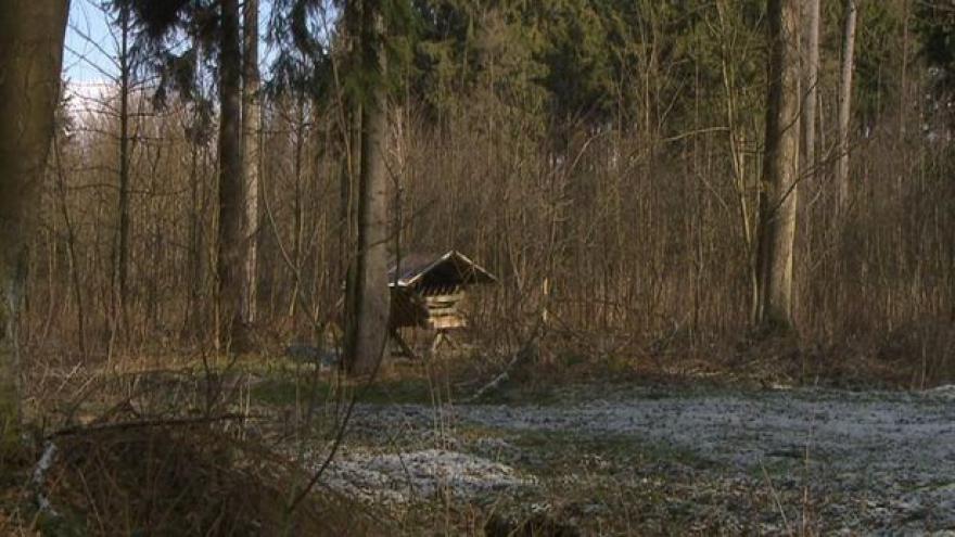 Video Události: Církev nezíská lesy z brdského újezdu