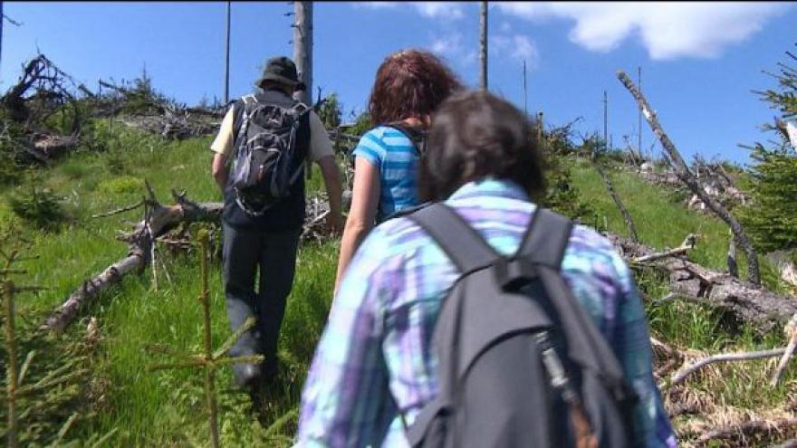 Video Výpravy do šumavské divočiny