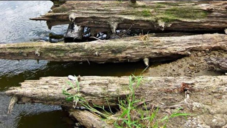 Video Odra odkryla zbytky 800 let staré dřevěné cesty