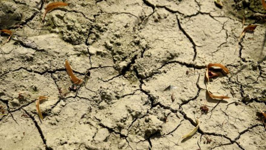 Video Události: Vláda jde do boje proti suchu