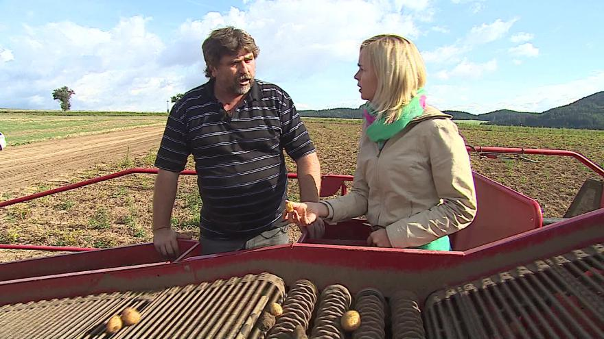 Video Zemědělec Jaroslav Crhák o letošní úrodě brambor