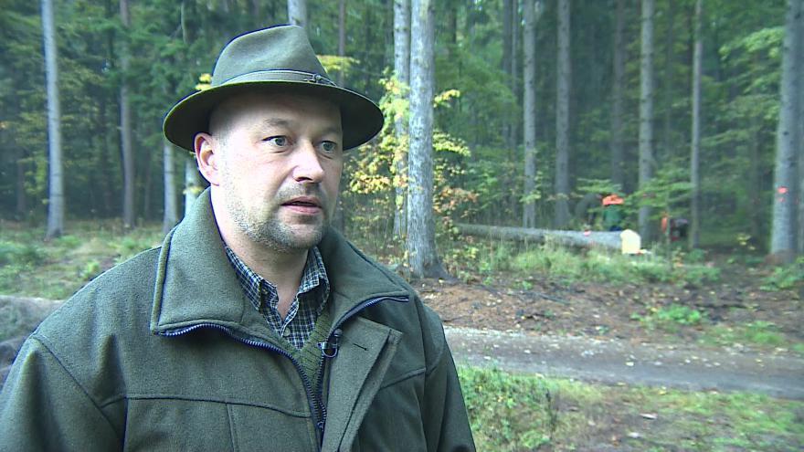 Video Dalibor Šafařík z Lesů ČR o napadení kůrovcem