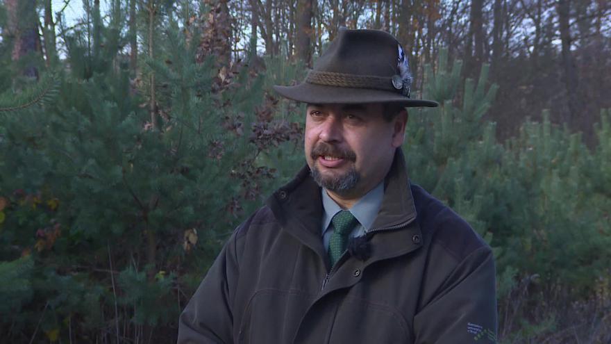 Video Vedoucí polesí Pavel Podlipný o krádežích stromků