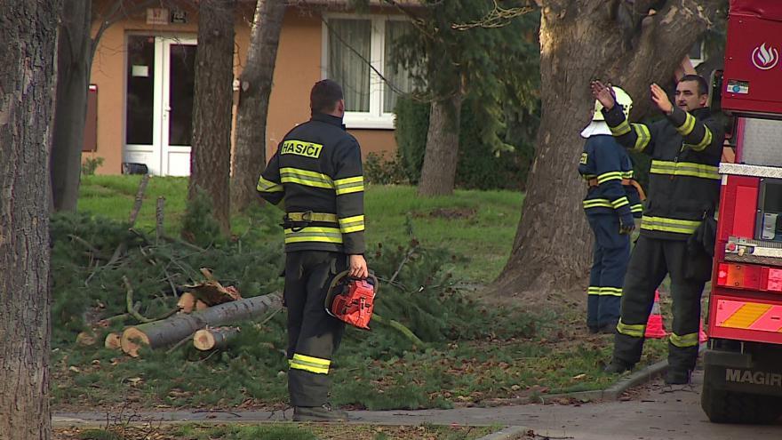 Video Bez komentáře: Silný vítr zaměstnal hasiče na jižní Moravě