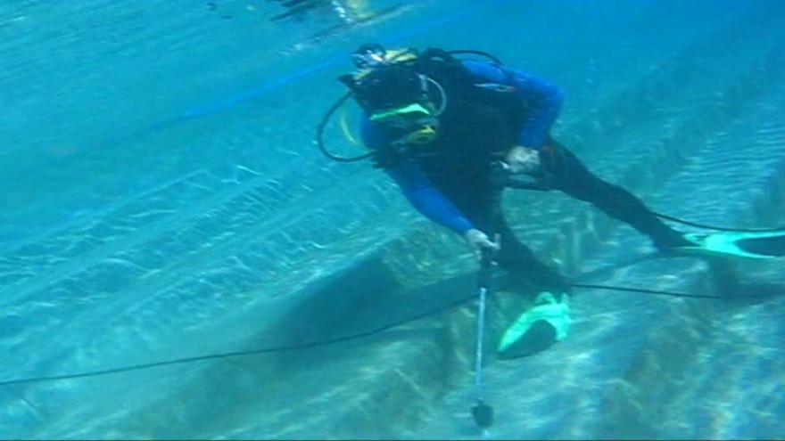 Video Potápěči v sezóně opravují praskliny v bazénech na brněnské Riviéře