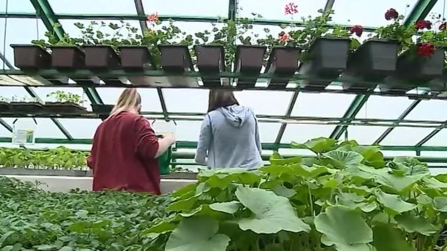 Video Zemědělské školy