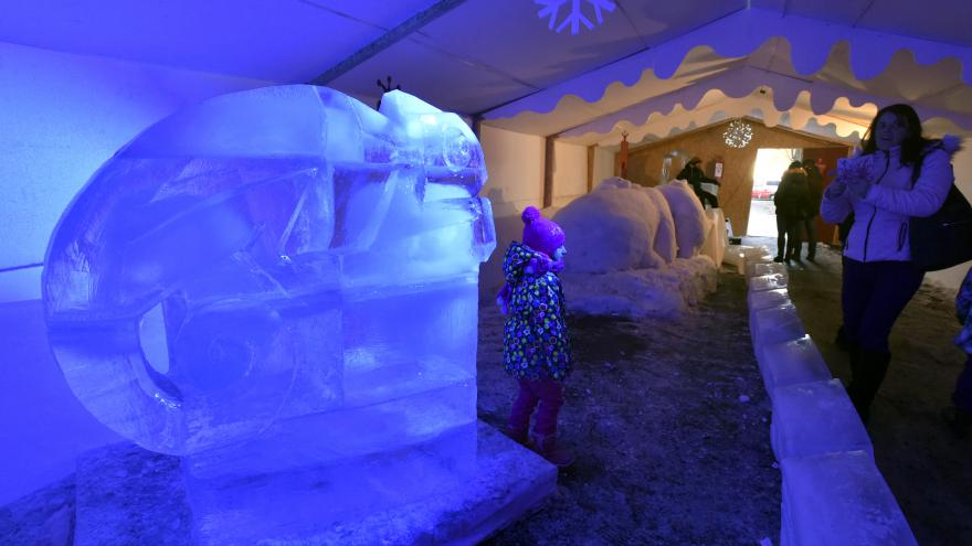 Video V Rožnově pod Radhoštěm vzniklo ledové království. Vládne mu chameleon
