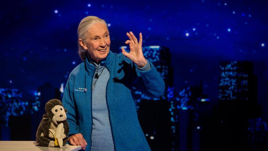 Video Hyde Park Civilizace - Jane Goodall