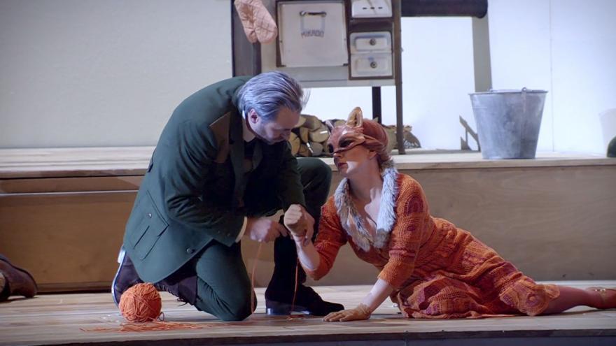 Video Příhody lišky Bystroušky