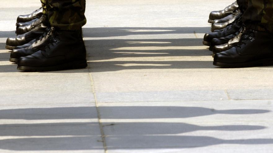 Video Šedivý: Armádu na hranicích mohou podpořit i zálohy