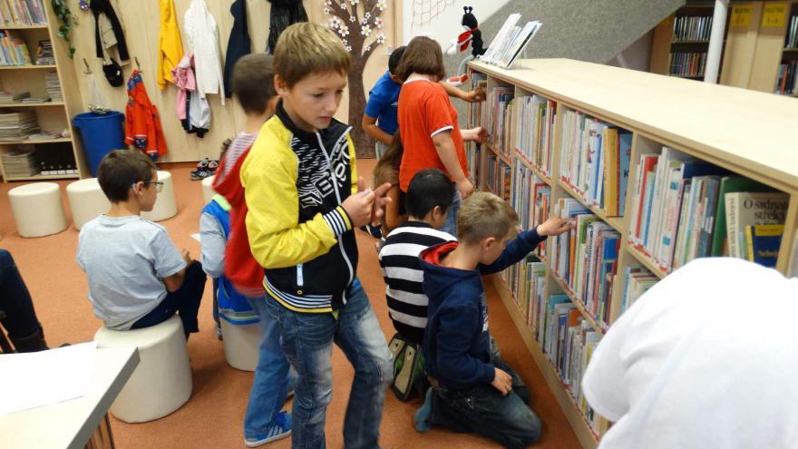 Video Nejlepší knihovnu mají v Hroznětíně