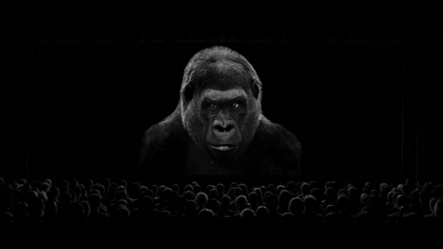 Video Dokumentární radost z Jihlavy 2015