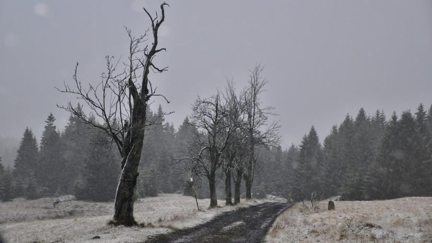 Video Meteorolog Žák: V neděli ráno hrozí náledí