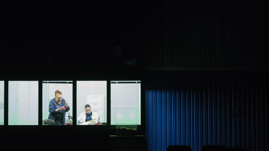 Video Události v kultuře