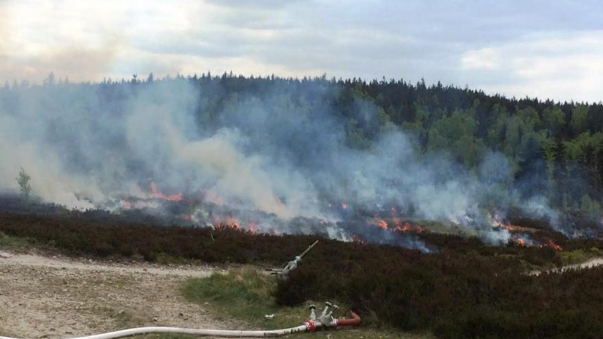 Video Nelegální ohniště ohrožují i Brdy