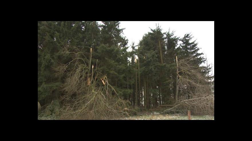 Video Lesníci sčítají škody po kalamitě