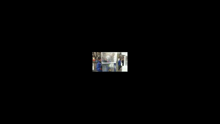 Video Sochaři vytváří ledový bar