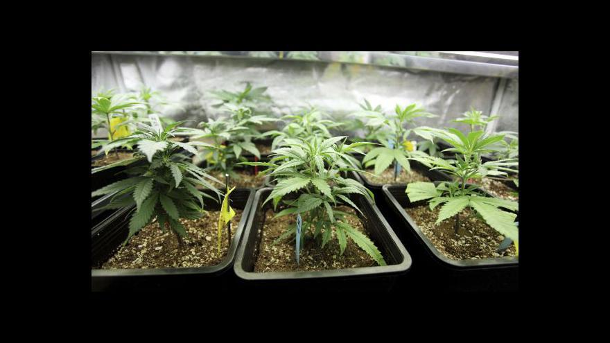 Video Studio 6: Jak odnaučit kouření marihuany