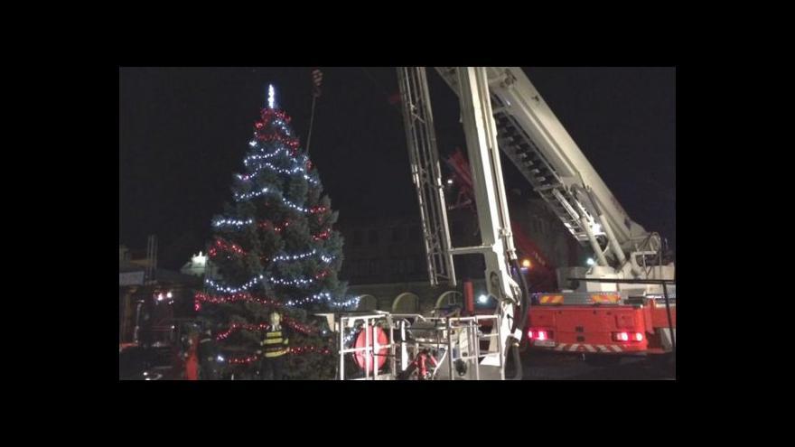 Video Pozor na vítr: Může lámat stromy, v ohrožení jsou i ty vánoční