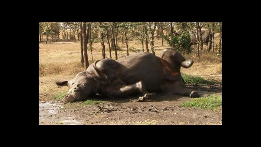 Video Jan Stejskal: Pro ochranu zvířat by se mohlo dělat více