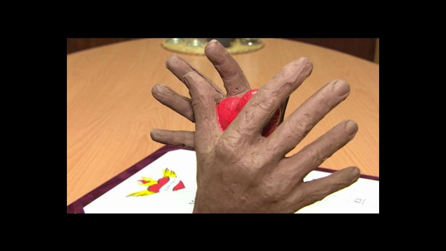 Video Reportáž: Cena pro Žlutice - za integraci Romů
