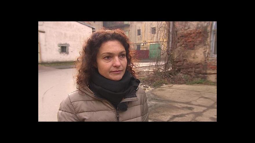 Video O výstavě hovoří kurátorka Andrea Březinová