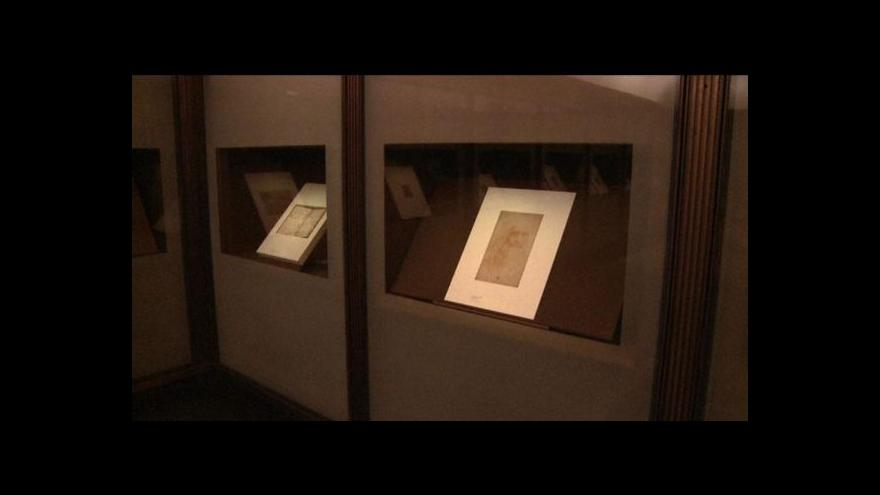 Video Da Vinciho portrét poškodila vlhkost