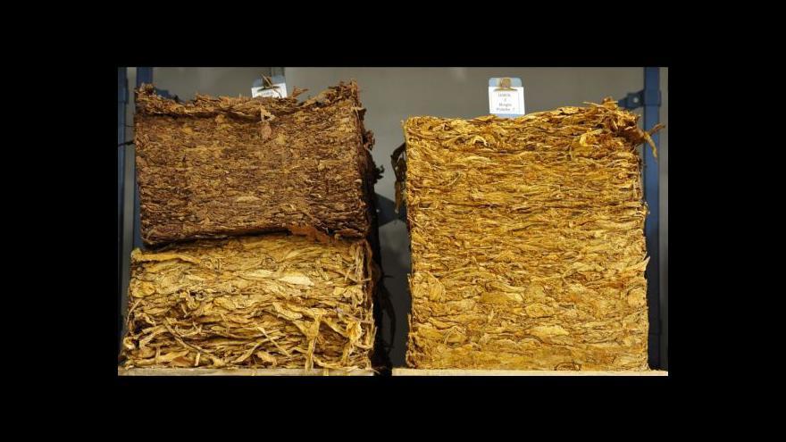 Video Obchod s tabákem: Chystá se povinný registr i kauce