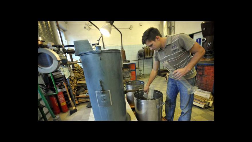 Video Pálenice hlásí třetinovou úrodu proti loňsku