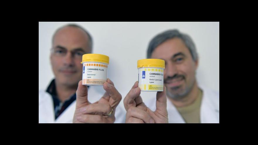 Video Události, komentáře: Léčebné konopí je v Česku