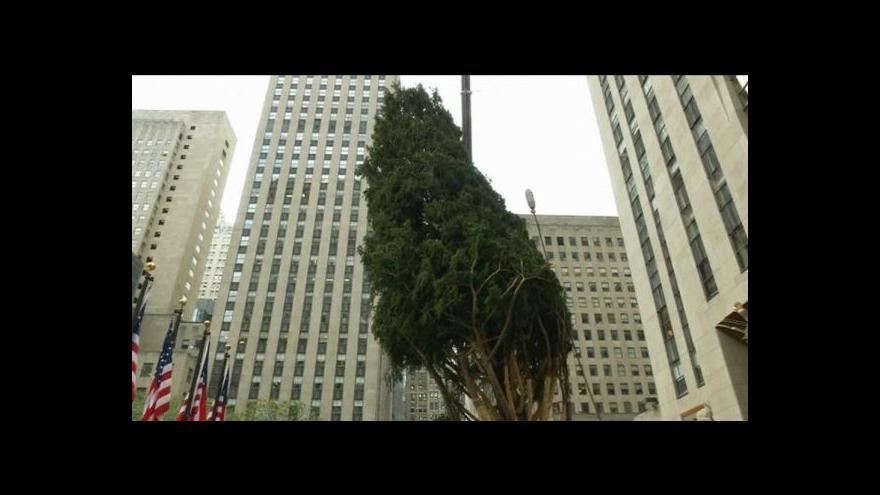 Video Vánoční strom u Rockefellerova centra v New Yorku už stojí