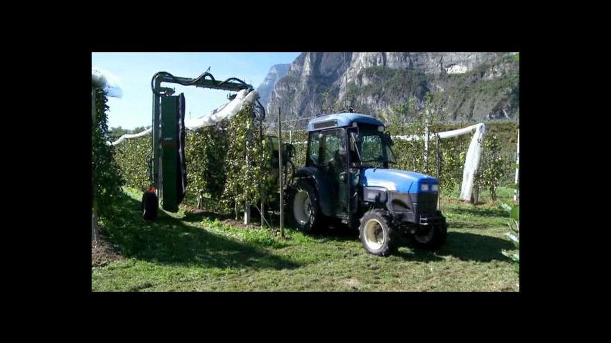Video Nová odrůda je prý ekonomičtější i ekologičtější