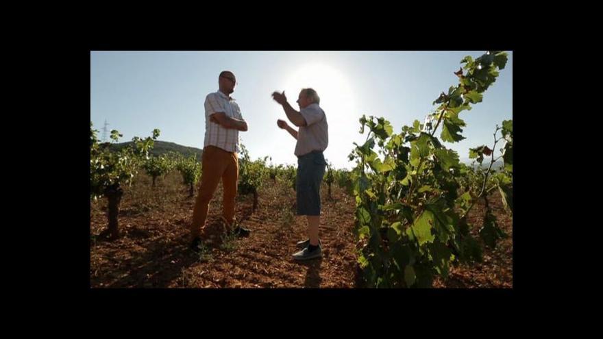 Video Opustil fóliovníky a pěstuje biologické víno