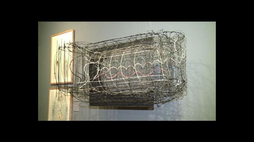 Video Výstava Karla Malicha