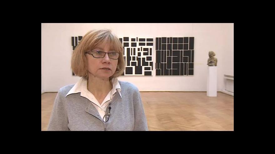 Video O výstavě Mladé setkání hovoří kurátorka Ilona Tunklová