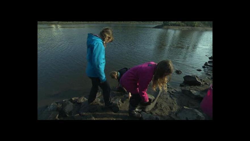 Video UvR: Záchrana vltavských škeblí v Praze