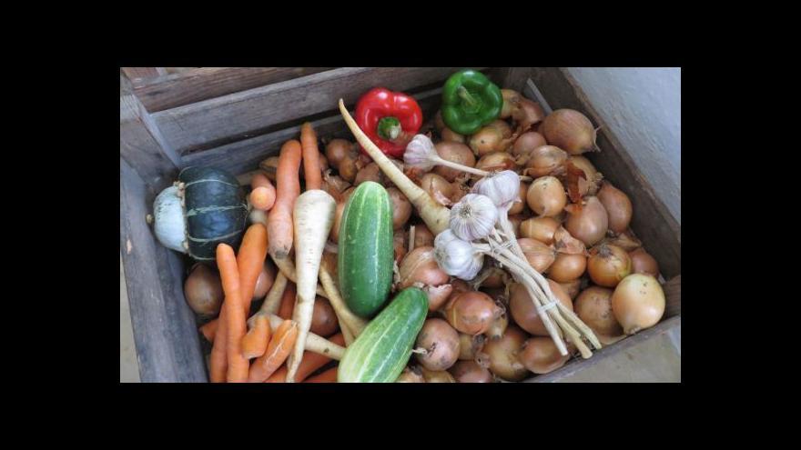 Video S přebytkem zeleniny si poradí potravinové banky i happening