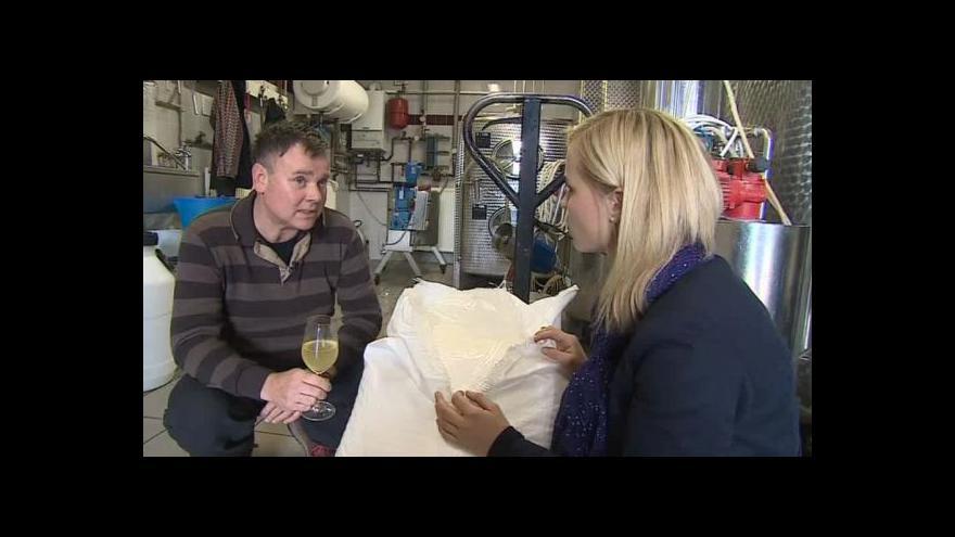 Video O přislazování vína hovoří vinař František Mádl