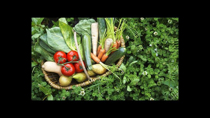 Video Jurečka chce chránit zemědělce před levnými potravinami