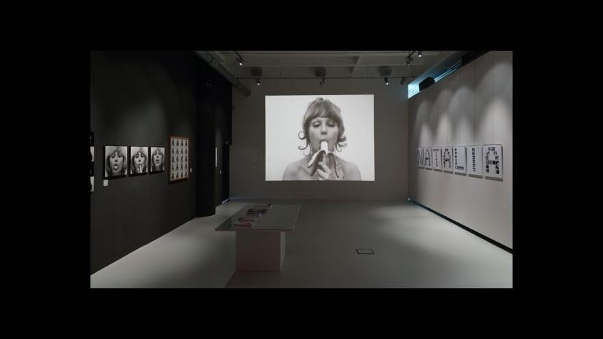 Video Pornografie? Zlínský kraj zavřel výstavu