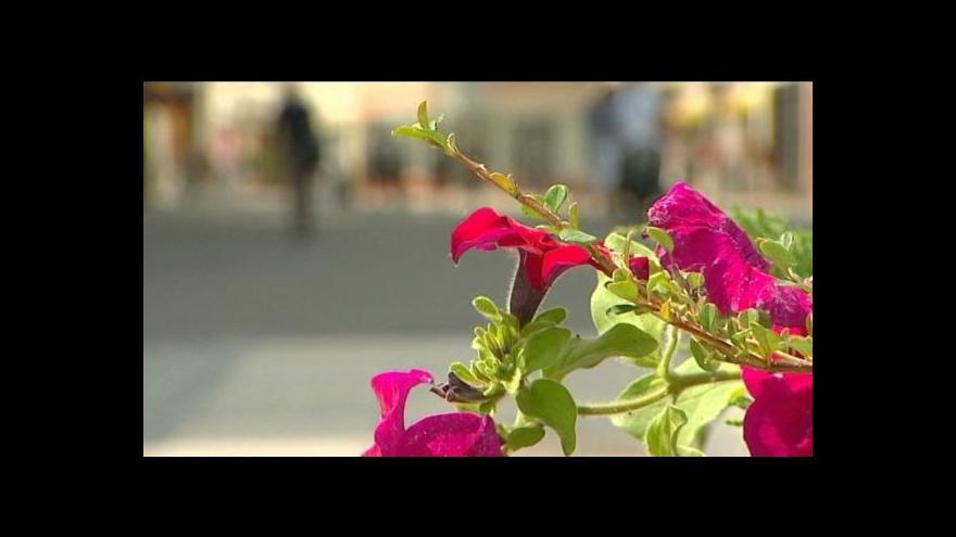 Video V Olomouci začala letní Flora