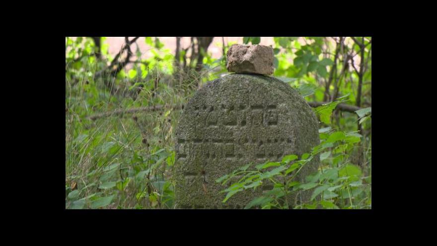 Video Tyfový hřbitov upomíná na havlíčkobrodskou barákovou kolonii