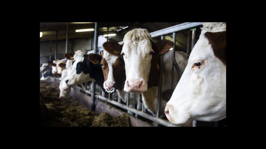 Video Zákaz dovozu potravin do Ruska rozděluje tamní společnost
