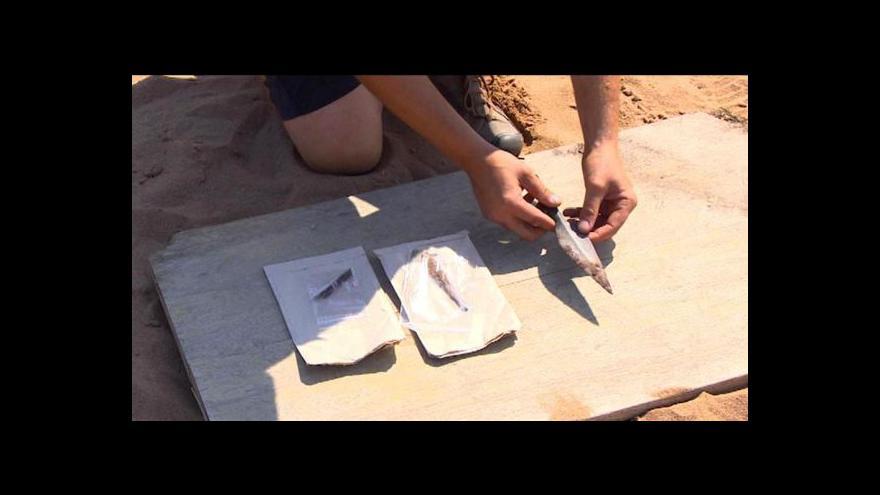 Video Archeologové na Pardubicku jásají. Našli germánské hroby