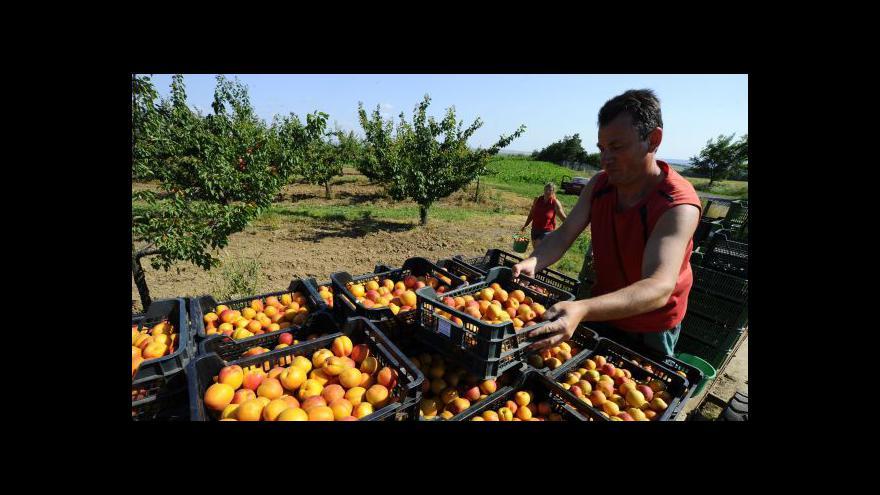 Video Pýcha: Rusko nemůže jen tak zastavit import potravin z EU