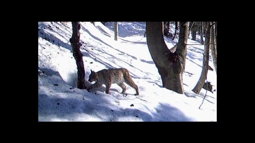Video Ministerstvo zastavilo projekt Národní park Jeseníky