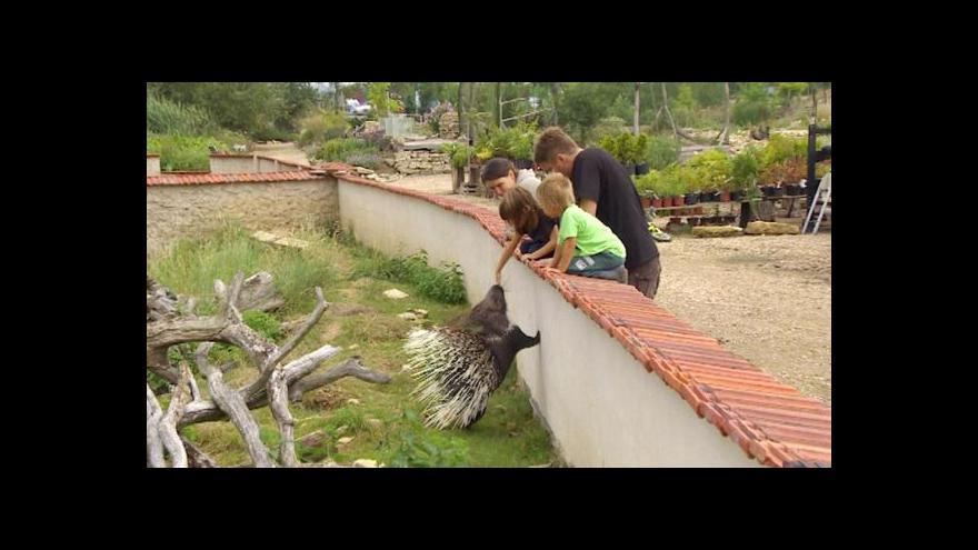 Video Manželé Hojní budují unikátní soukromou zoo