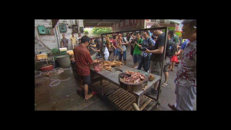 Video Festival psího masa má odpůrce už i v Číně
