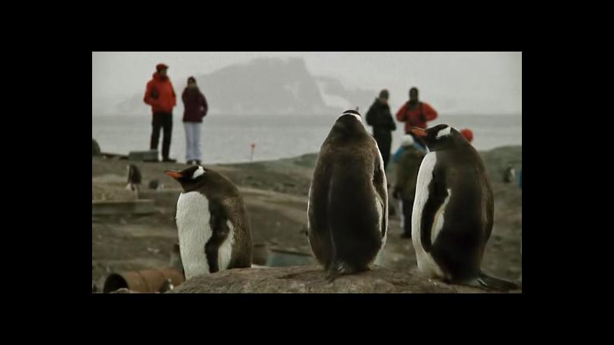 Video Horizont 24: Antarktida trpí přívalem turistů