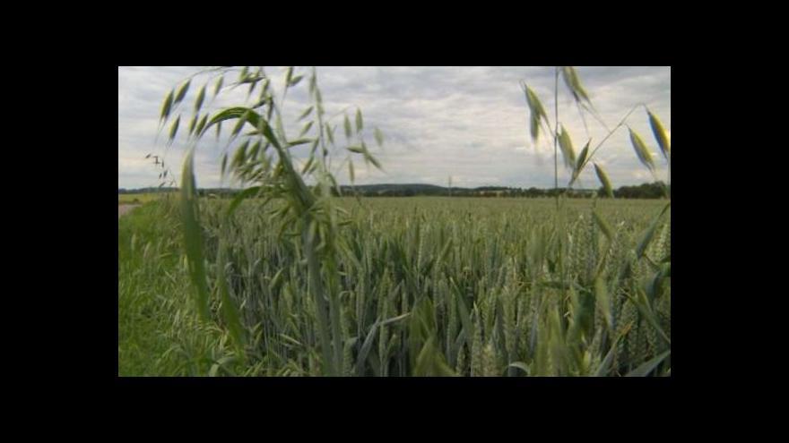 Video Ve výkupních cenách pozemků nutných k dostavbě D11 je nepoměr